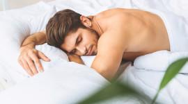 Man Sleeps Desktop Wallpaper