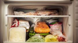 Meat Freezer Wallpaper Gallery