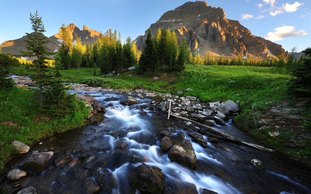 Mountain Stream wallpapers HD
