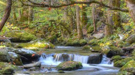 Mountain Stream Wallpaper For Android