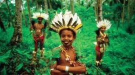 New Guinea Desktop Wallpaper For PC