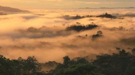 New Guinea Wallpaper High Definition