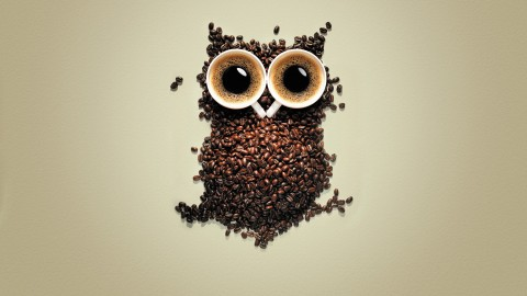 Owl Coffee wallpapers high quality