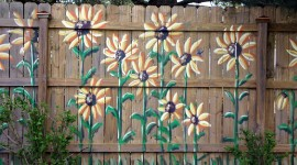 Painted Fences Photo Free
