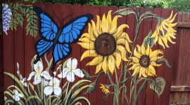 Painted Fences Wallpaper Free