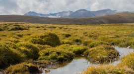 Peat Bogs High Quality Wallpaper
