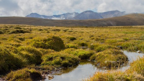 Peat Bogs wallpapers high quality