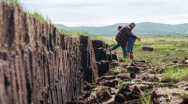 Peat Bogs Wallpaper Download