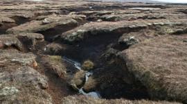 Peat Bogs Wallpaper Gallery