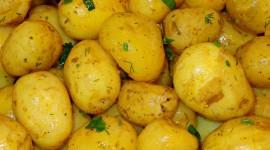 Potato With Herbs Wallpaper Free