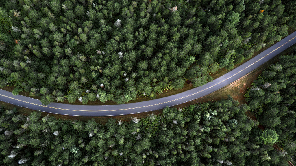 Road In The Forest Top View wallpapers HD
