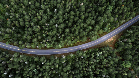 Road In The Forest Top View wallpapers high quality