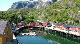 The Lofoten Islands Photo Download