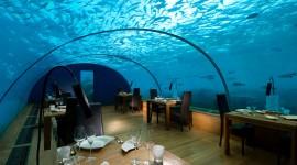 Underwater Bar Wallpaper Background