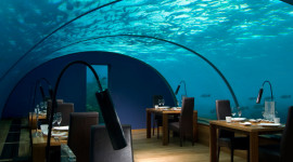 Underwater Bar Wallpaper For IPhone Free