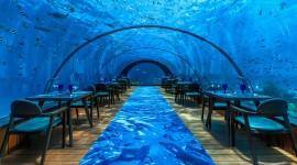 Underwater Bar Wallpaper For PC