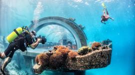Underwater Bar Wallpaper Free