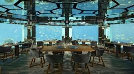 Underwater Bar Wallpaper HD