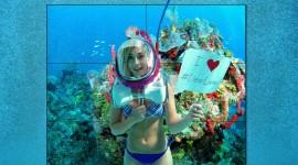 Underwater Bar Wallpaper High Definition