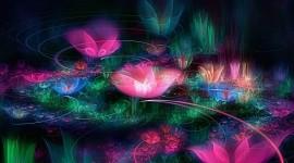 4K Fractal Multicolored Wallpaper Full HD