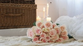 Bed Rose Photo Download