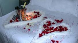Bed Rose Wallpaper Free