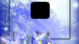 Bird Photo Frames For IPhone#1