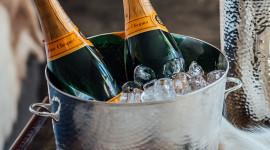 Champagne Bucket Photo Free