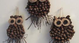 Decor Cones Photo Download