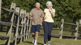 Fitness For The Elderly For Desktop