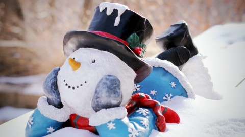 Funny Snowman wallpapers high quality