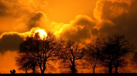 Golden Sky Photo Download