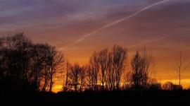 Golden Sky Picture Download