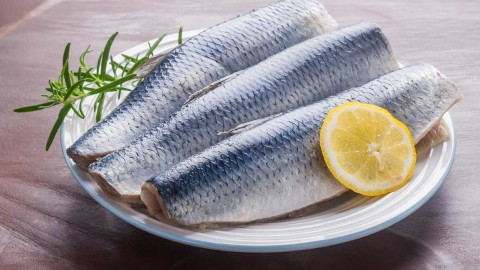 Herring Fillet wallpapers high quality