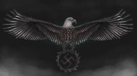 Metal Eagle Wallpaper High Definition