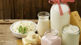 Milk Cheese Desktop Wallpaper For PC