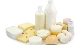 Milk Cheese High Quality Wallpaper