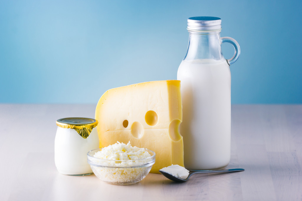 Milk Cheese wallpapers HD