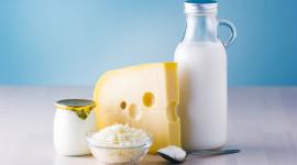 Milk Cheese Wallpaper Gallery