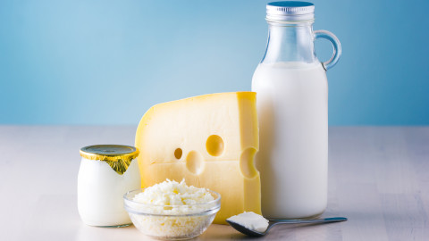 Milk Cheese wallpapers high quality