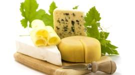Milk Cheese Wallpaper HQ