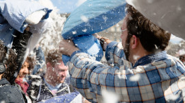 Pillow Fight Photo Download