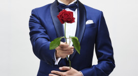 Show Bachelor Wallpaper For IPhone Download