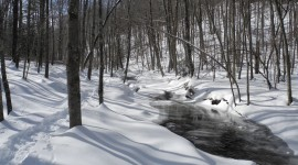 Stream The Snow Photo