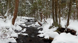 Stream The Snow Photo Download