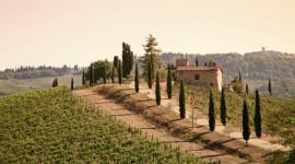 Tuscany Wallpaper Download