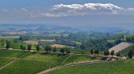 Winery In Italy Best Wallpaper