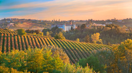 Winery In Italy Desktop Wallpaper