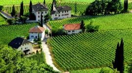 Winery In Italy Desktop Wallpaper Free