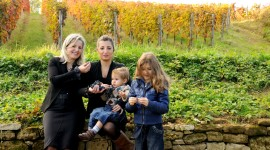 Winery In Italy Desktop Wallpaper HQ
